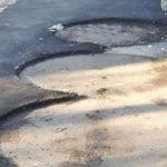 Dorel în acțiune la Craiova: a asfaltat în jurul pubelelor, să nu deranjeze gândacii protejați de UE