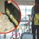Româncă prinsă pe aeroport cu 42 de kg de carne de miel, drob și slănină în bagaj. Nebuna a crezut că trece de câinele de la antidrob!
