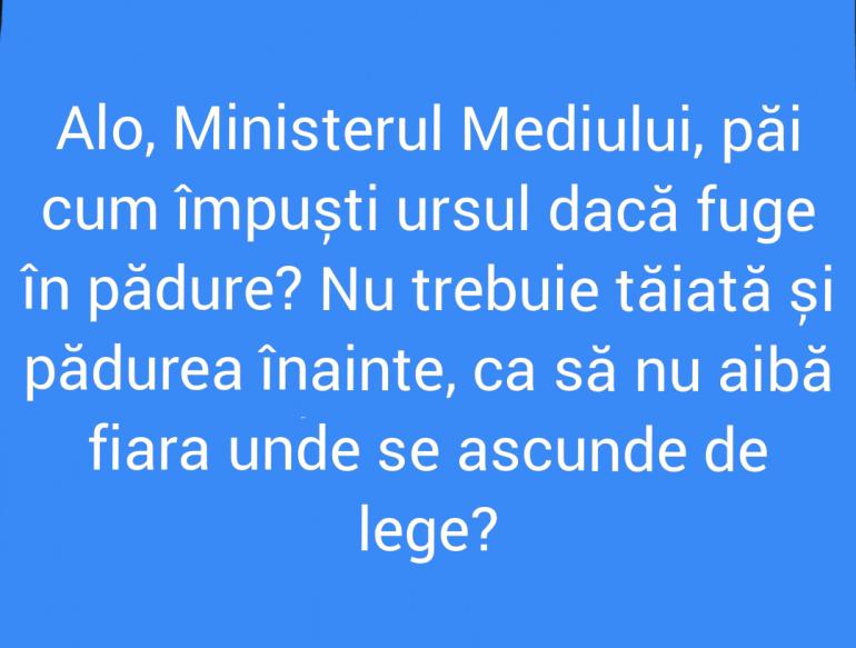 Polish_20210721_161721098