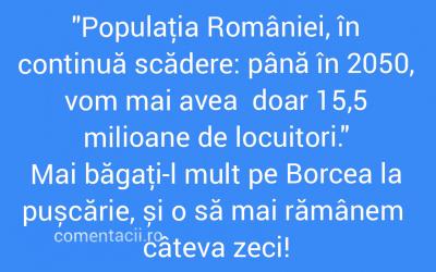 Polish_20210923_005833540