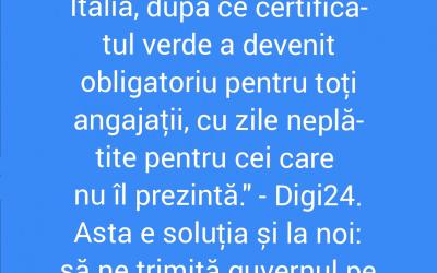 Polish_20211024_105222139